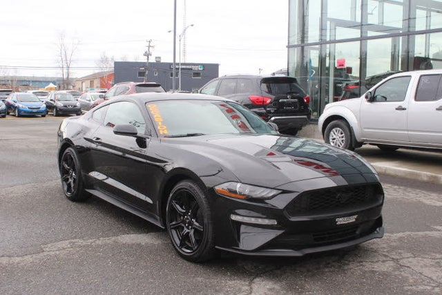 Used Ford Mustang For Sale In Quebec Qc Cargurus