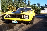 1973 Ford Mustang, I found this stang in a warehouse 4 $2,000. Stang is 90% perfect., exterior