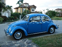 1964 Volkswagen Beetle, Picture of 1966 Volkswagen Beetle
