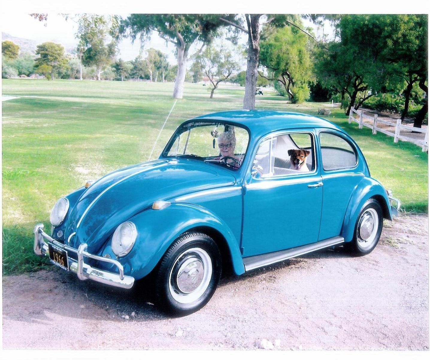 1966 Volkswagen Beetle Pictures Cargurus