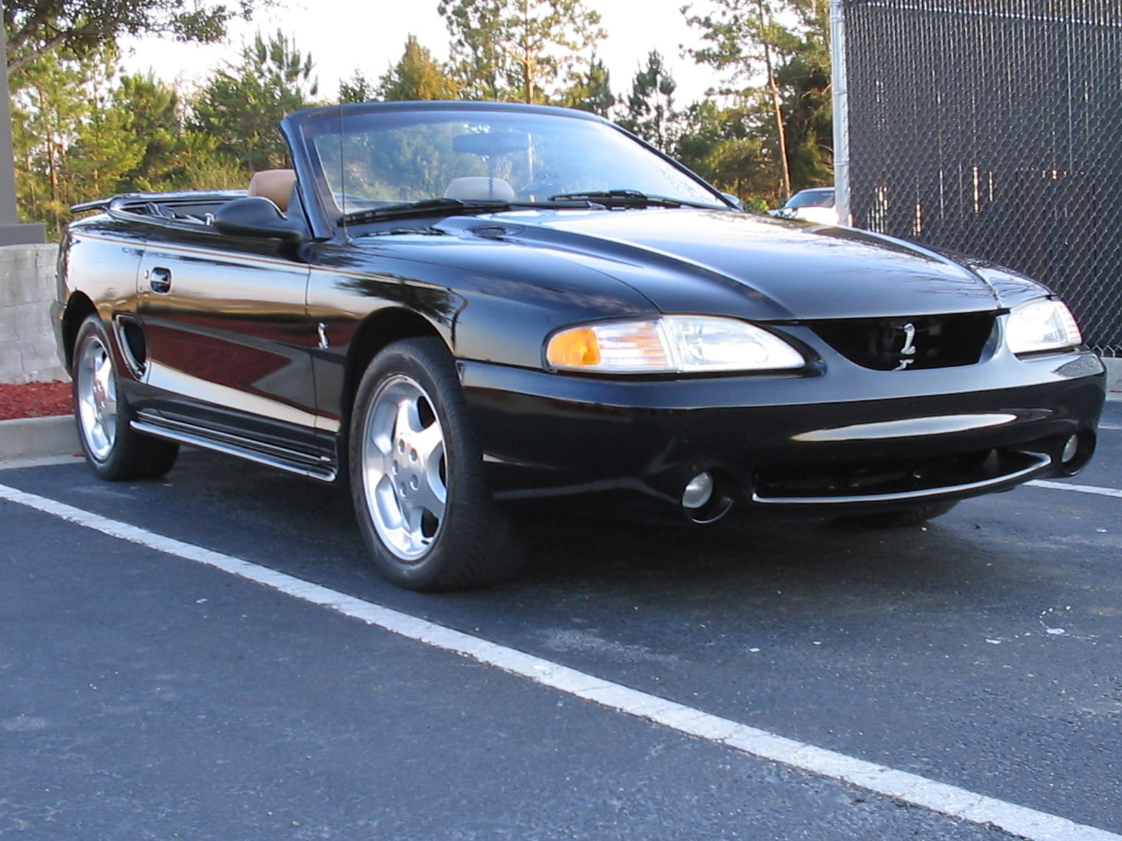 1995 ford mustang svt cobra pictures cargurus. Black Bedroom Furniture Sets. Home Design Ideas