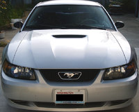 2002 Ford Mustang Base, Howdy!