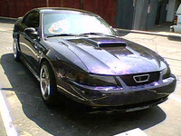 2002 Ford Mustang Picture Gallery