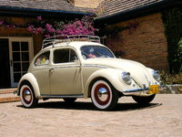 1954 Volkswagen Beetle Picture Gallery