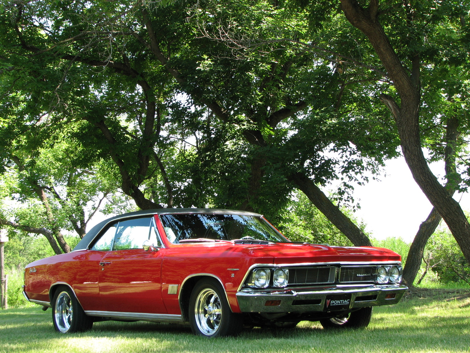 1966 pontiac beaumont picture of chevrolet chevelle. Cars Review. Best American Auto & Cars Review