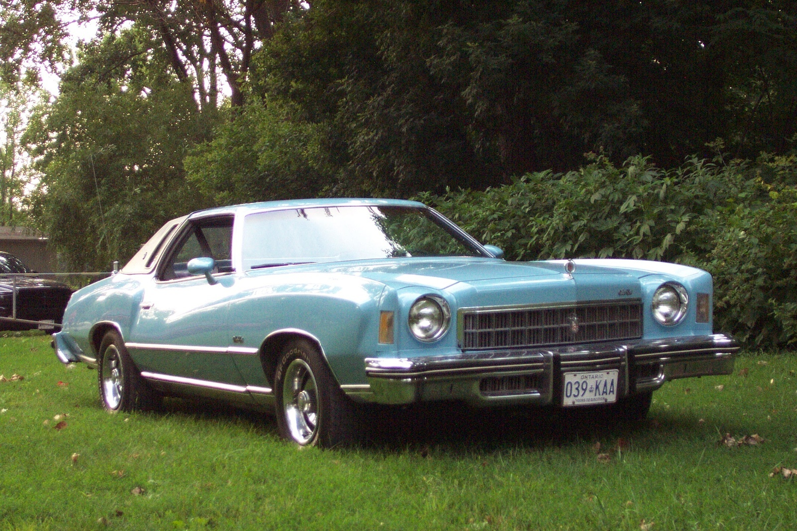1975 Chevrolet Monte Carlo Overview Cargurus