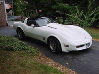 1981 Chevrolet Corvette Picture Gallery