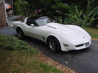 1981 Chevrolet Corvette Base, LeRoy1706's 1981 Chevrolet Corvette Coupe, exterior