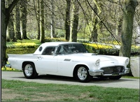 1957 Ford Thunderbird Picture Gallery