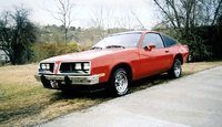 Picture of 1978 Pontiac Sunbird, gallery_worthy