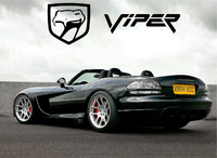 2004 Dodge Viper, 2008 Dodge Viper SRT10 Coupe picture