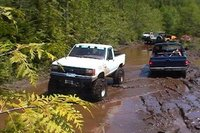 Picture of 1992 Ford Ranger Custom Standard Cab 4WD SB