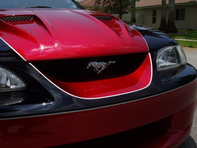 Picture of 1995 Ford Mustang SVT Cobra 2 Dr R Coupe