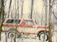Picture of 1978 Ford Bronco
