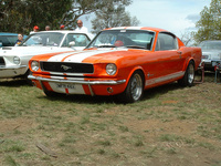 Picture of 1965 Ford Mustang Shelby GT350