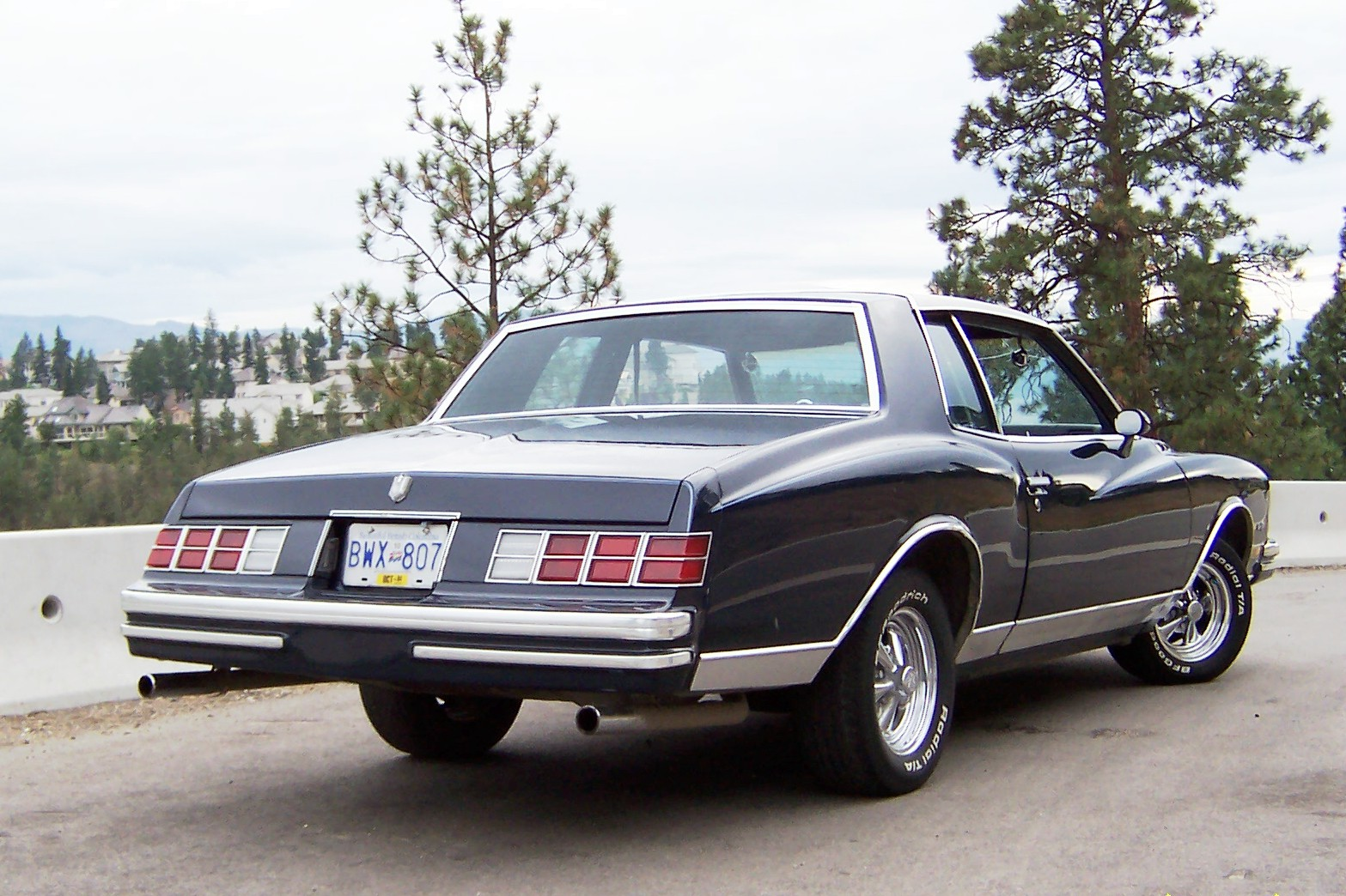 1985 to 1987 chevrolet monte carlo ss for sale 12 autos post. Black Bedroom Furniture Sets. Home Design Ideas