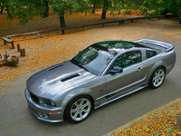 2007 Saleen S281 Coupe 3V picture