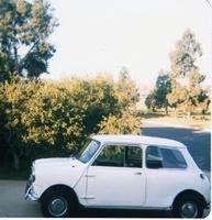 1963 Morris Mini picture