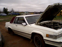 Picture of 1982 Ford Thunderbird