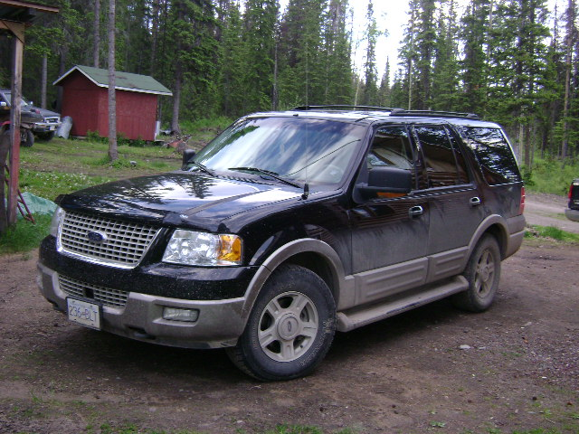 picture of 2003 ford expedition eddie bauer 4wd. Cars Review. Best American Auto & Cars Review