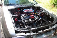 Picture of 1985 Ford Mustang LX Coupe RWD, gallery_worthy