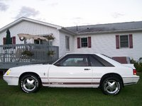 Picture of 1984 Ford Mustang GT350 Coupe RWD, gallery_worthy
