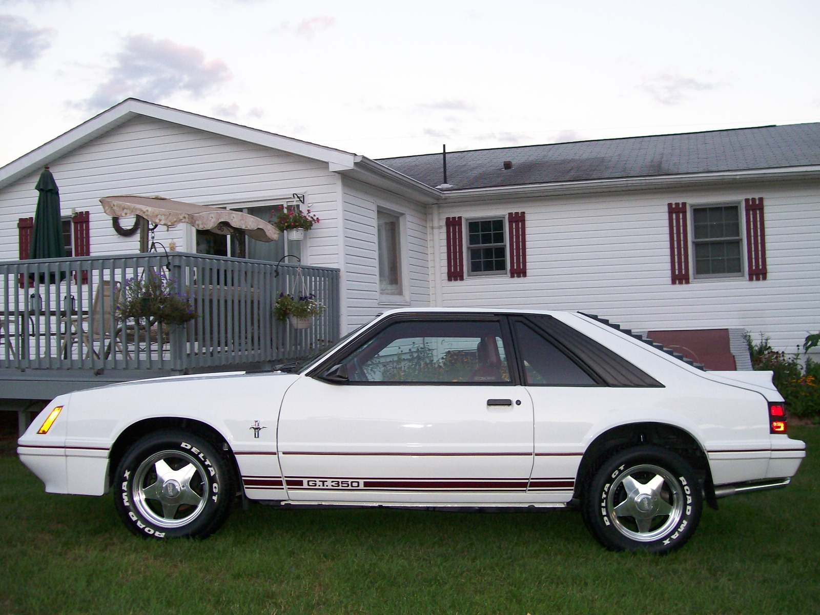 Picture of 1984 ford mustang gt350 exterior - Filename 1984_ford_mustang_gt350 Pic 19581 Jpeg