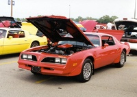 1978 Pontiac Trans Am picture