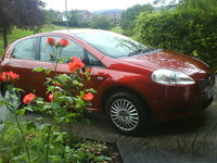 Picture of 2006 FIAT Grande Punto, gallery_worthy