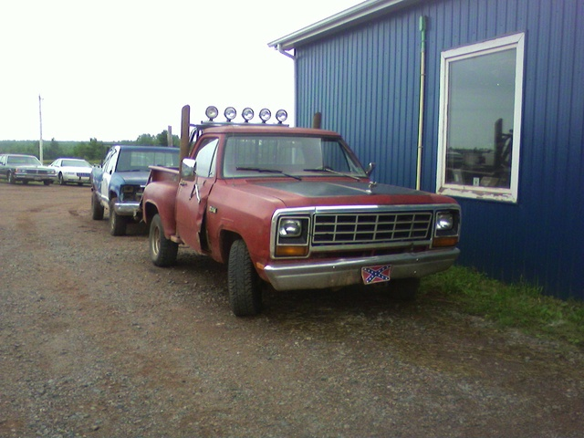 Picture of 1981 Dodge RAM, gallery_worthy