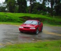 Picture of 1998 Ford Mustang SVT Cobra Coupe, gallery_worthy