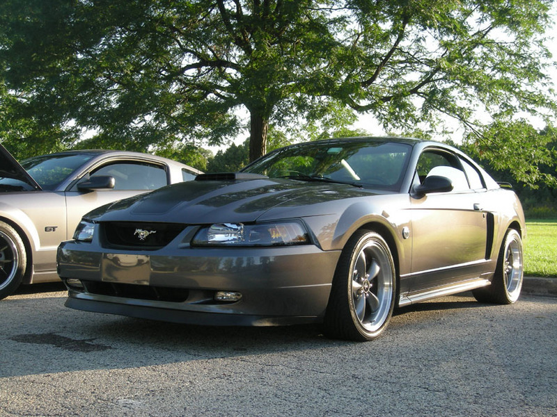 picture of 2004 ford mustang mach 1. Black Bedroom Furniture Sets. Home Design Ideas