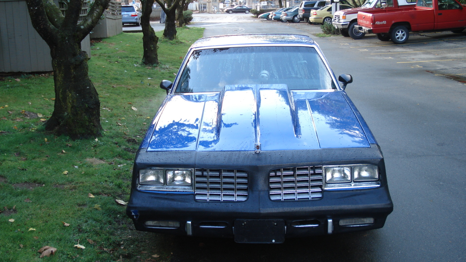 1981 Oldsmobile Cutlass Supreme picture