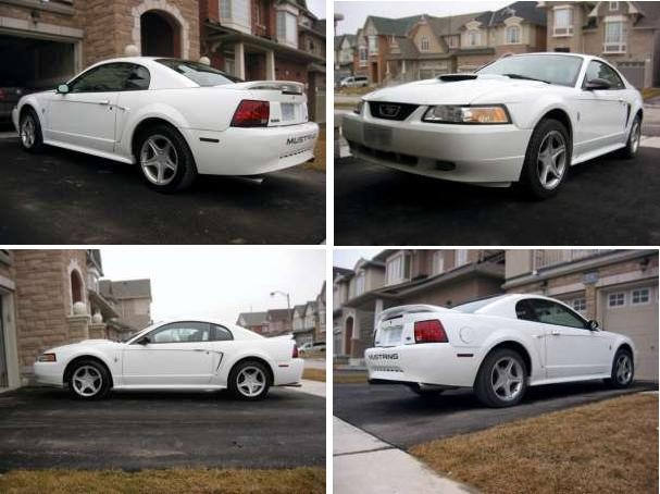 Picture of 2000 Ford Mustang Coupe, gallery_worthy