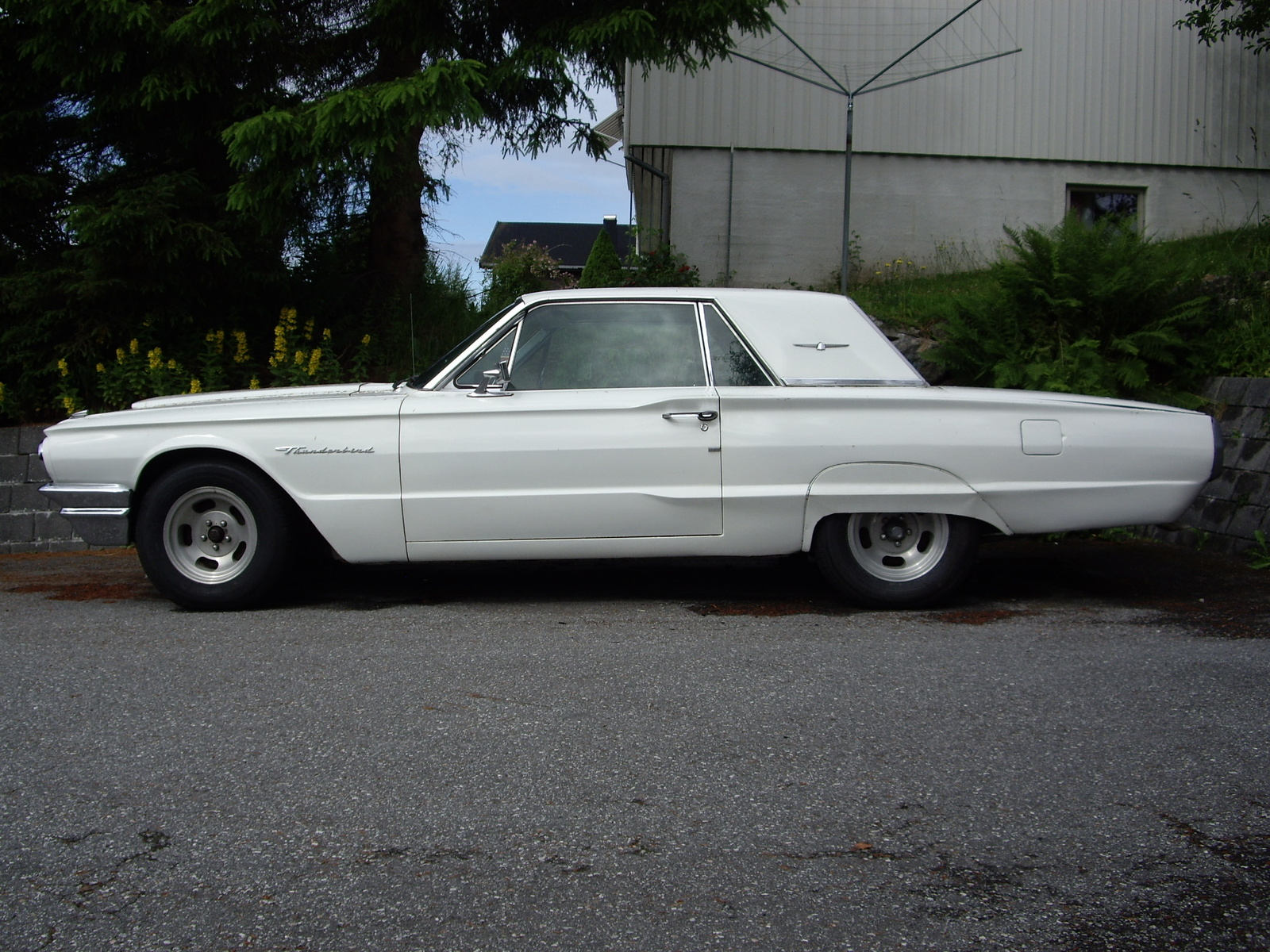 Picture of 1964 Ford ThunderbirdFord Thunderbird 1964