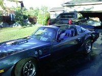 1981 Pontiac Trans Am picture