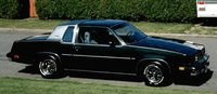 1981 Oldsmobile Cutlass picture, exterior