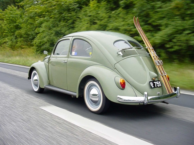Picture of 1951 Volkswagen Beetle, gallery_worthy