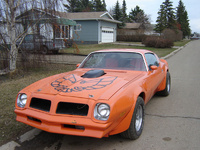 1976 Pontiac Trans Am picture