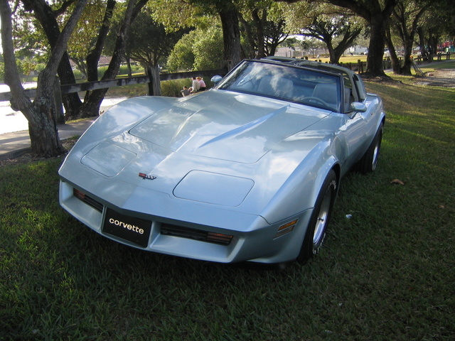 Picture of 1982 Chevrolet Corvette, exterior, gallery_worthy