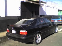 1995 BMW 3 Series 325i, 1995 BMW 325 325i picture