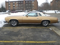 1976 Pontiac Grand Prix, 1976 Golden Anniversary Grand Prix
