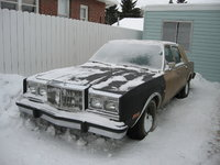 Picture of 1982 Chrysler New Yorker, gallery_worthy