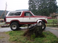 1984 Ford Bronco picture, exterior
