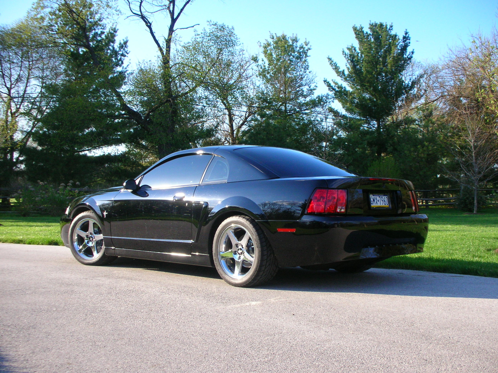 2001 ford mustang svt cobra car wallpaper