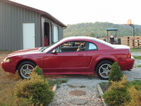 Picture of 2000 Ford Mustang Coupe RWD, gallery_worthy