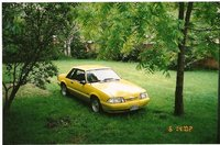 Picture of 1988 Ford Mustang, gallery_worthy