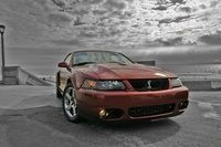 2003 Ford Mustang SVT Cobra 2 Dr 10th Anniversary Supercharged Coupe picture