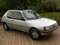 Picture of 1985 Peugeot 205, gallery_worthy