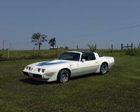 Picture of 1980 Pontiac Trans Am, exterior